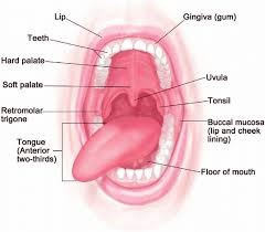 Oral Cancer - Dr Syed Hassanujjaman